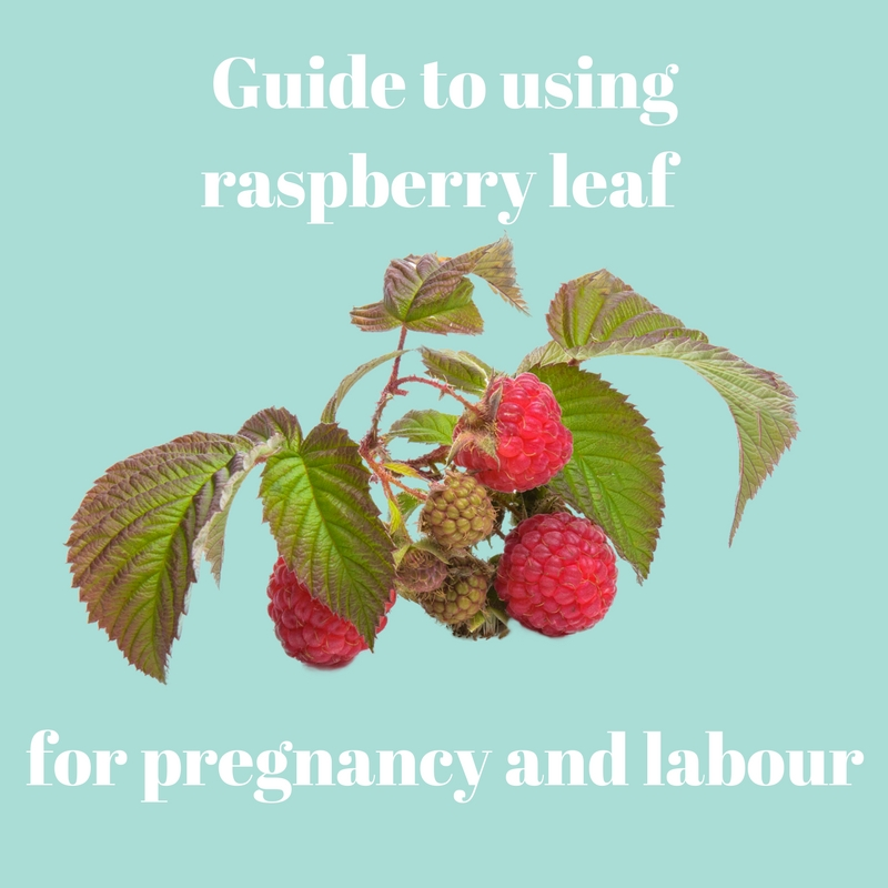 Guide to using raspberry leaf for pregnancy and labour